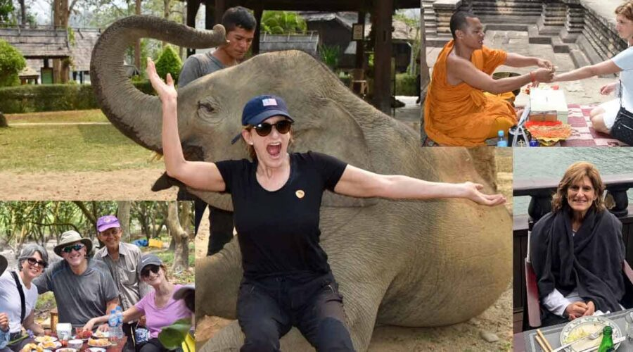 I fed the elephants—And you should, too!