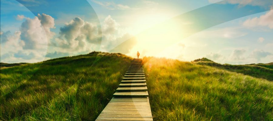Due Diligence: A Path to Self-Discovery, Not a Destination